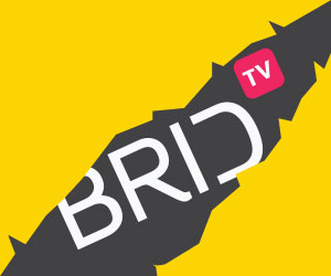 Introducing Brid.tv