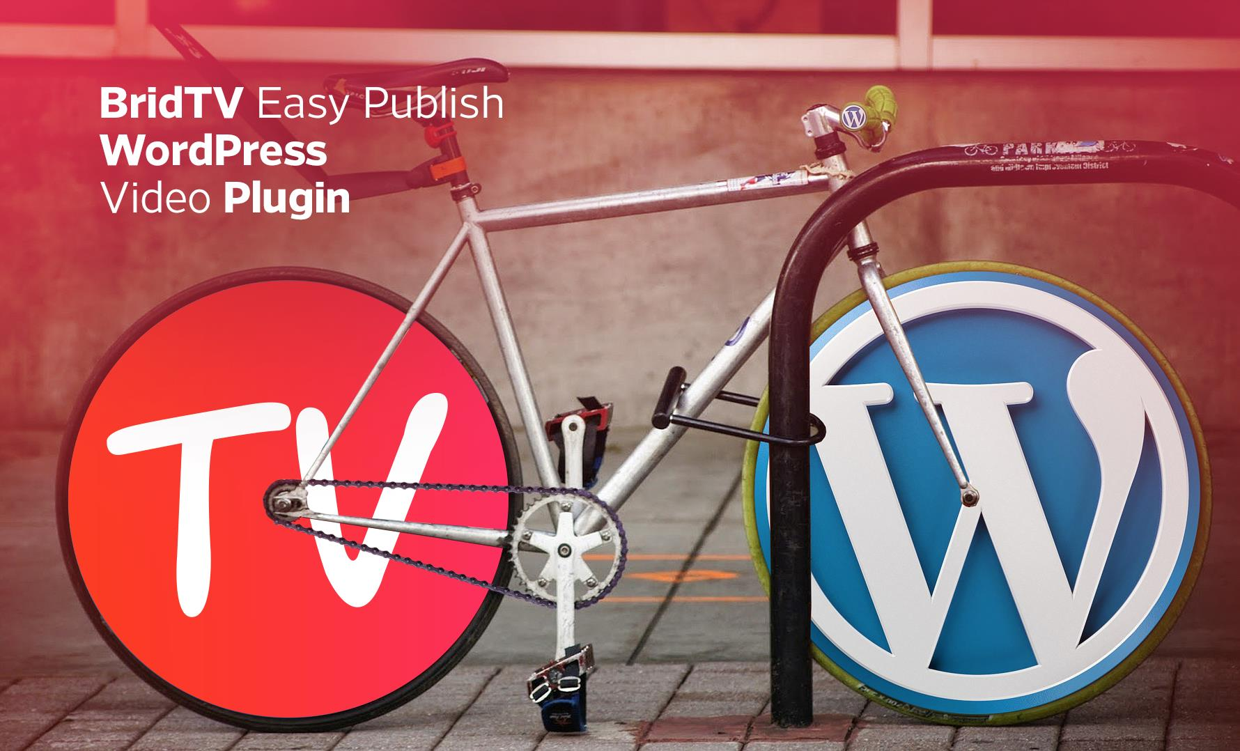 BridTV Easy Publish WordPress Video Plugin