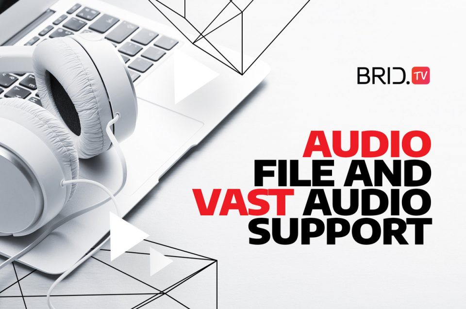 audio file and vast audio support