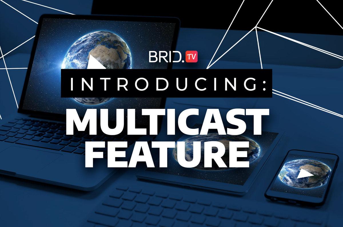 bridtv multicast feature